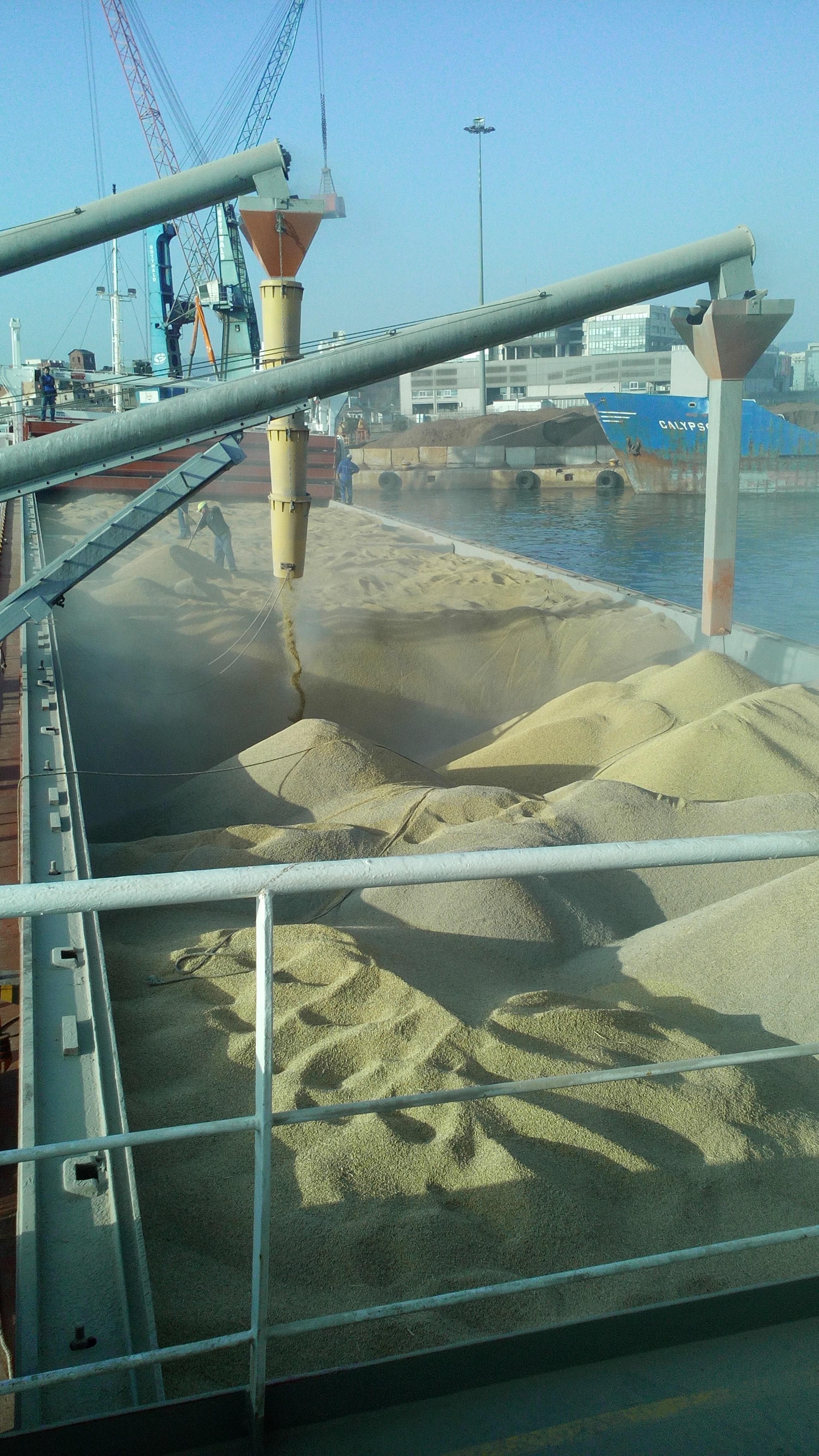 bulk-shipment